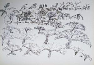 Bäume für September, Tusche, 1978